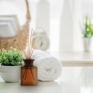 3111786-botanica-batonnet-parfumés-vetiver-des-caraibes-&-bois-de-santal-product-in-use-fr